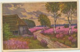 76-815 Estonia  WO 1012 Painting - Estland