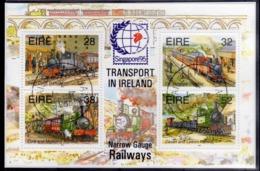 EIRE IRELAND IRLANDA 1995 TRAINS TRANSPORT RAILWAYS TRENI BLOCK SHEET BLOCCO FOGLIETTO FIRST DAY SPECIAL CANCEL FDC - Blocchi & Foglietti