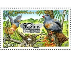 Ref. 353120 * MNH * - NEW CALEDONIA. 2015. ORNITOLOGIA - Neukaledonien