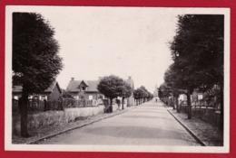 BULLY LES MINES 62 ( CITE DES ALOUETTES ) ANNEES 50 - Autres Communes