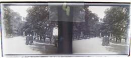 BREST Vers 1900 : Promenade, Lieu à Situer. Plaque Verre Stéréoscopique. Négatif. - Diapositiva Su Vetro
