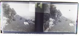 BREST Vers 1900 : Sortie Du Dimanche, Sur Les Remparts (?). Plaque De Verre Stéréoscopique. Négatif. - Diapositiva Su Vetro