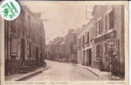 53 - Très Belle Carte Postale Ancienne De  Bourgneuf La Forèt    Rue Principale - Francia
