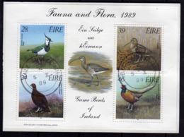 EIRE IRELAND IRLANDA 1989 FAUNA AND FLORA GAME BIRDS BLOCK SHEET BLOCCO FOGLIETTO FIRST DAY SPECIAL CANCEL FDC - Blocchi & Foglietti