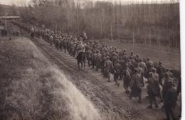 MILITARIA(PHOTO) PRISONNIER - Guerra 1914-18