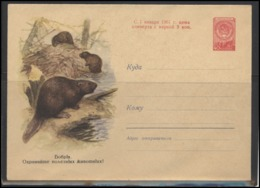 RUSSIA USSR Stamped Stationery Ganzsache 1286 1960.07.03 Fauna Animals Beavers - 1960-69