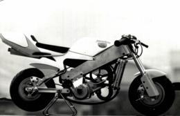 POLINI Mini Racer  +- 14cm X 9cm  Moto MOTOCROSS MOTORCYCLE Douglas J Jackson Archive Of Motorcycles - Photos