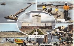 17. LE CHAPUS. CARTE MULTI VUES 5 VUES ANNEE 1963.  A DESTINATION DE JOUE LES TOURS 37 - Sonstige Gemeinden