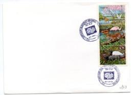 Carta Con Matasellos Commemorativo  Brasil De 1984 - Brazilië