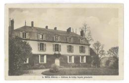 CPA 58 BONA CHATEAU DE LICHY FACADE PRINCIPALE - Frankreich