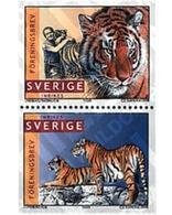 Ref. 282110 * MNH * - SWEDEN. 1998. PHOTOGRAPHER JAN LINDBLAD'S TIGERS . LOS TIGRES DEL FOTOGRAFO JAN LINDBLAD - Nuovi