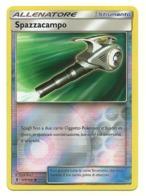 Pokemon  - Spazzacampo - Pokemon