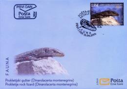 2019 Fauna, FDC, Montenegro, MNH - Montenegro