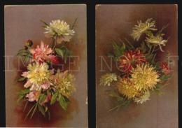 Groupe De Fleurs De Chrysanthème Flowers Chrisantemum Cpa Postcard Cartolina W5-734 - Fiori