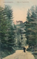 XCZE.146.  Reichenberg - Liberec - Blick Zur Tugemannshoehe - 1909 - Tchéquie