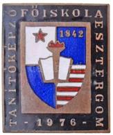1976. 'Tanítóképző Főiskola Esztergom' Zománcozott Jelvény (30x25mm) T:1- - Munten & Bankbiljetten