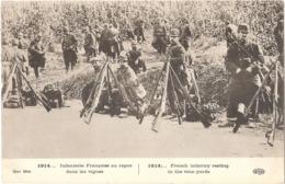 1914... Infanterie Française Au Repos Dans Les Vignes - (ELD) - Weltkrieg 1914-18