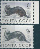 B6104 Russia USSR Fauna Water Animal Sea Otter ERROR - Meereswelt