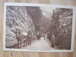 La Faucille - Route Du Col - Gex