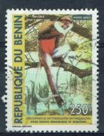 "Benin, 250f., Red-bellied Monkey (Cercopithecus Erythrogaster) ""Zin Kaka"", 1983, VFU - Benin - Dahomey (1960-...)"