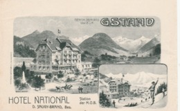 GSTAAD HOTEL NATIONAL ETIQUETTE SUR PAPIER FORMAT 13 X 8 - Adesivi Di Alberghi