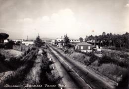 ALTOPASCIO (LU) - Autostrada Firenze - Mare - F/G - V: 1961 - Altre Città