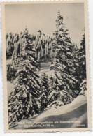 AK 0333  Blick Vom Alpengasthaus Am Sonnwendstein Zur Gipfelkapelle - Verlag Ledermann Um 1941 - Semmering