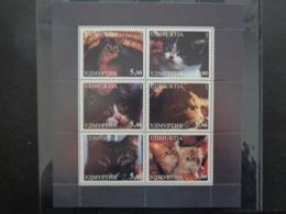 UDMURTIA 1998 - BLOC 6 TIMBRES - CHATS DIVERS - Blocks & Sheetlets & Panes