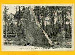 72OI2 Environs D'Oizé Menhir De Mère Et Fille - Autres Communes