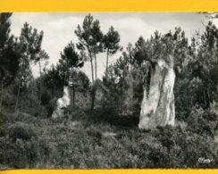 72OI5 Oizé Menhir De Mère Et Fille - Sonstige Gemeinden