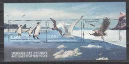 FRENCH ANTARCTIC TERRITORY 2017 -Arctic & Antarctic Birds- Arctic Tern & King Penguins- Vogel- Oiseaux -Aves- - Preserve The Polar Regions And Glaciers