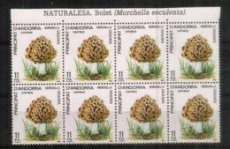 ANDORRA. Morilles Blondes Des Pyrénées. Bloc De 8 Timbres Neufs **  Bord De Feuille - Pilze