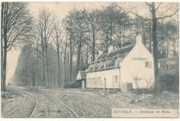 HEVERLE - Entrée Du Bois - België