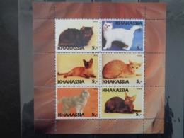 KHAKASSIA 2003 - BLOC 6 TIMBRES - CHATS DIVERS - Sibérie Et Extrême Orient