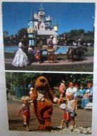 FANTASY ISLAND Grand Island New York Parco Divertimenti Disney Cartolina Non Viaggiata - Disney