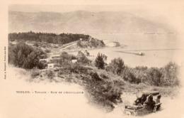 83 TOULON TAMARIS BAIE DE L' AIGUILLETTE CANON SUR LA PLAGE CARTE PRECURSEUR CLICHE UNIQUE - Tamaris