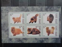 BURIATIA 1998 - BLOC 6 TIMBRES - CHATS DIVERS - Sibérie Et Extrême Orient