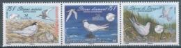 New Caledonia, Birds, Terns, 2009, MNH VF a Triptych - Neufs