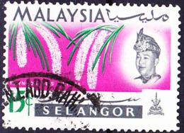 Malaiische Staaten V - Selangor - Orchidee (Rhynchostylis Retusa) (MiNr: 103) 1965 - Gest Used Obl - Selangor