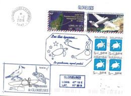 "229 - 45 - Enveloppe TAAF Iles Eparses - Iles Glorieuses - Timbre Et Cachets Thème ""tortues"" 2016 - Tortues"