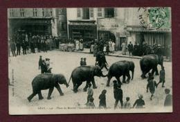 """GRAY  (70) : """" LE CIRQUE PINDER - LES ELEPHANTS - PLACE DU MARCHE """" - Gray"""
