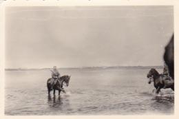 Foto Deutsche Soldaten Zu Pferd In Einem Fluss - 2. WK - 8,5*5,5cm (44064) - Krieg, Militär