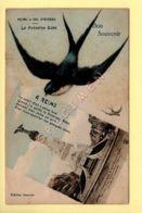 51. REIMS à Vol D'Oiseau - Bon Souvenir - La Fontaine Subé (voir Scan Recto/verso) - Reims