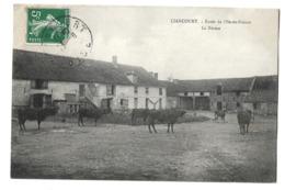 60 - LIANCOURT - Lot De 4 CPA : Ecole De L'Ile De France - Haut De La Rue Jules Michelet - L'église -Le Sanatorium - Liancourt