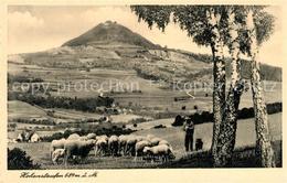 43344679 Goeppingen Landschaftspanorama Mit Blick Zum Hohenstaufen Schafherde Sc - Goeppingen