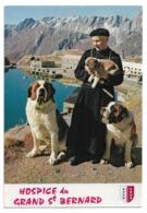 Grand Saint-Bernard - Chanoine Et Chien De L'Hospice - Cani