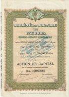 Titre Ancien - Société De Culture De Pacouda - Société Anonyme Hollandaise - Titre De 1911 - - Landbouw