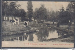 Carte Postale 59. N.D. Du Haut-Mont  La Pièce D'Eau Trés Beau Plan - France