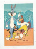 Cp, BANDES DESSINEES , PERSONNAGES WARNER BROS , 1974 ,vierge - Comics
