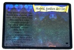 E01 / HOLO N° 14/80 HAGRID GARDIEN DES CLES HARRY POTTER Carte TCG -WIZARDS 2002 - Harry Potter